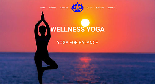 websites-for-wellness-one-page
